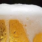 Nella birra un composto promettente contro Alzheimer e Parkinson