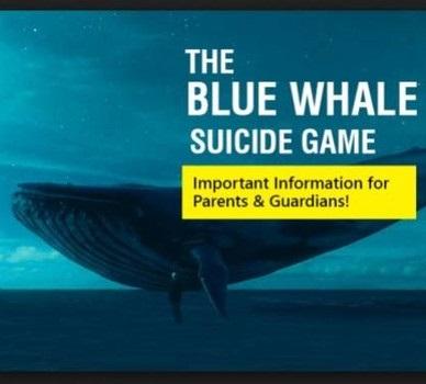 """""""Blue Whale"""": il gioco horror con una fine prestabilita"""